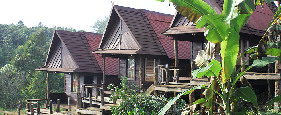 tree-lodge-cambodia-2