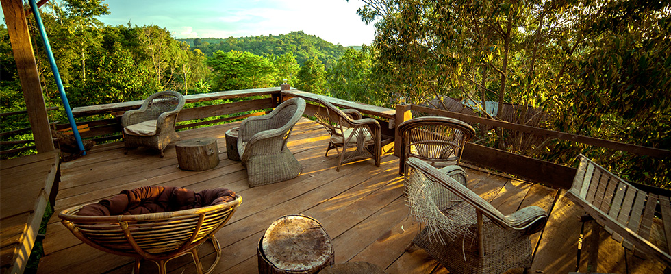 tree-lodge-cambodia